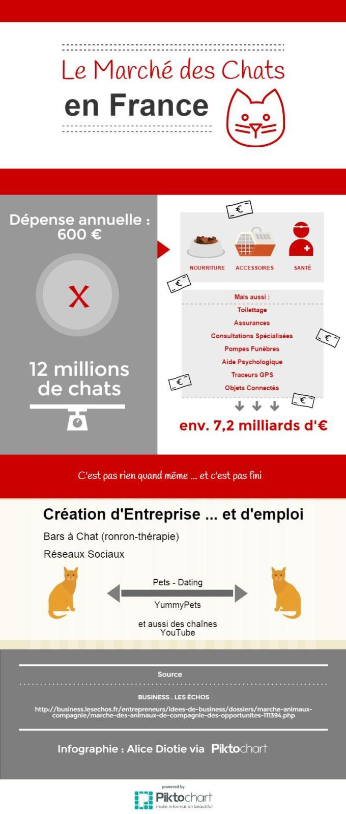 Infographie-Marche-des-chats