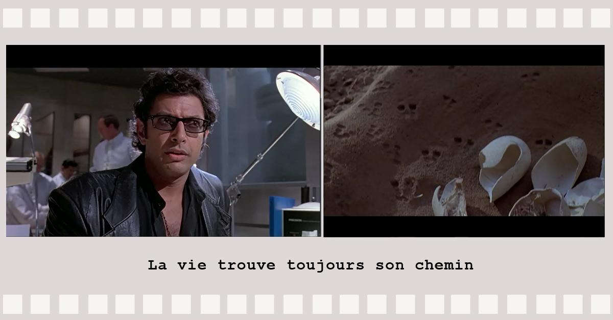 Professeur malcolm dans Jurassic Park